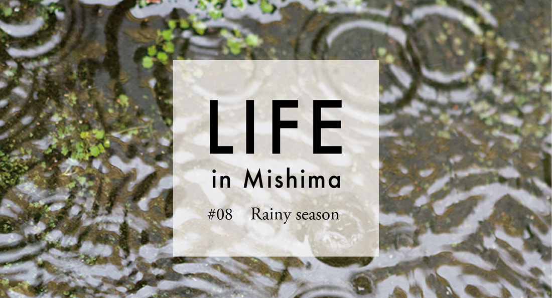 LIFE in MIshima #08 Rainy season